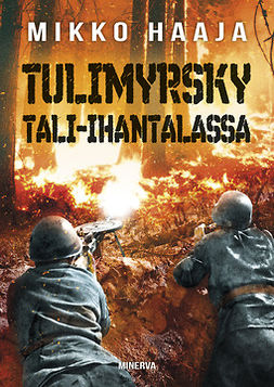 Tulimyrsky Tali-Ihantalassa