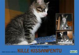 Vattulainen, Hemmo - Kille Kissanpentu – e-valokuvakirja, ebook