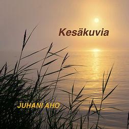 Aho, Juhani - Kesäkuvia, äänikirja