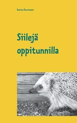 Peuraniemi, Kaarina - Siilejä oppitunnilla, ebook
