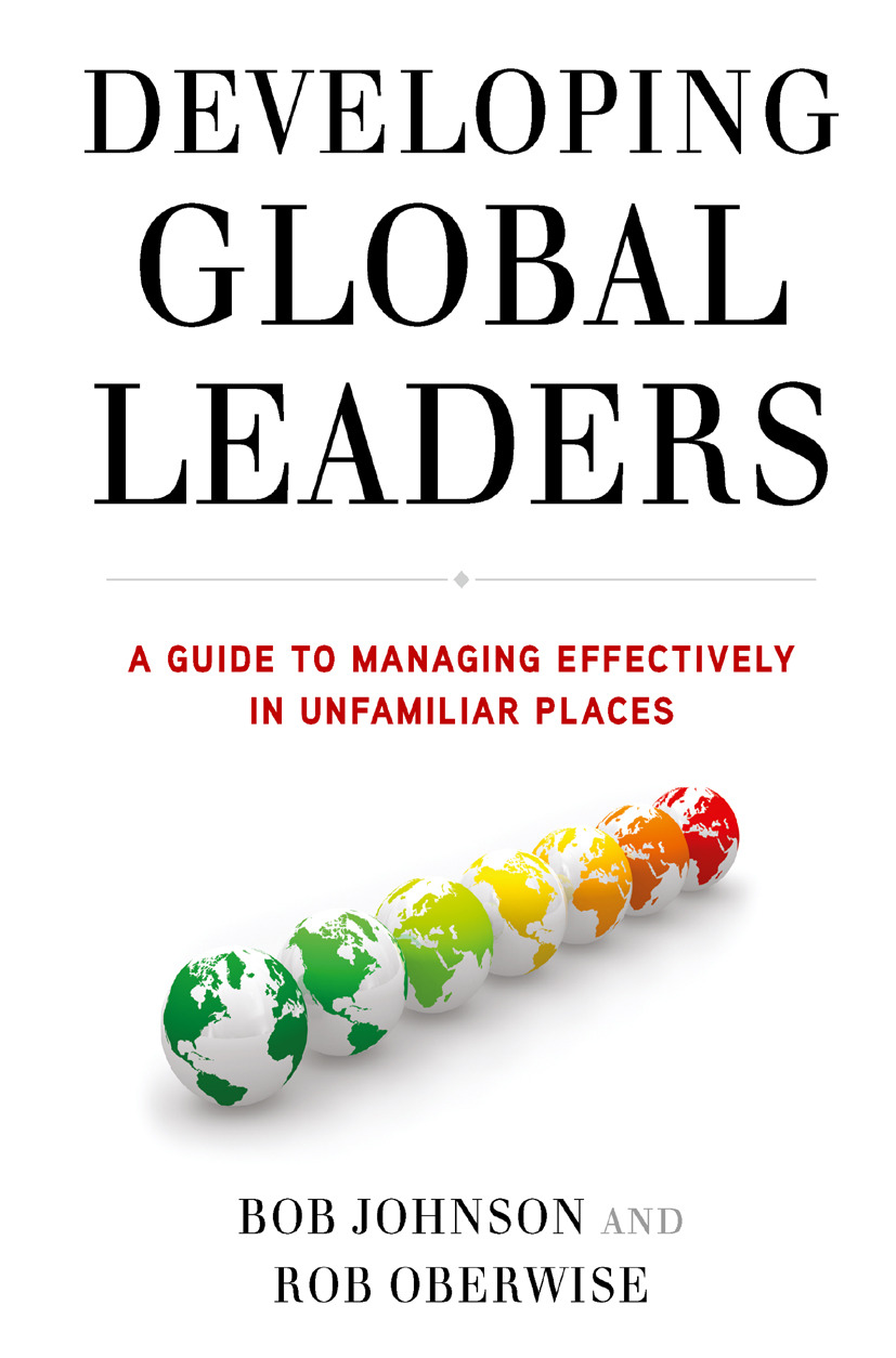 Johnson, Bob - Developing Global Leaders, ebook