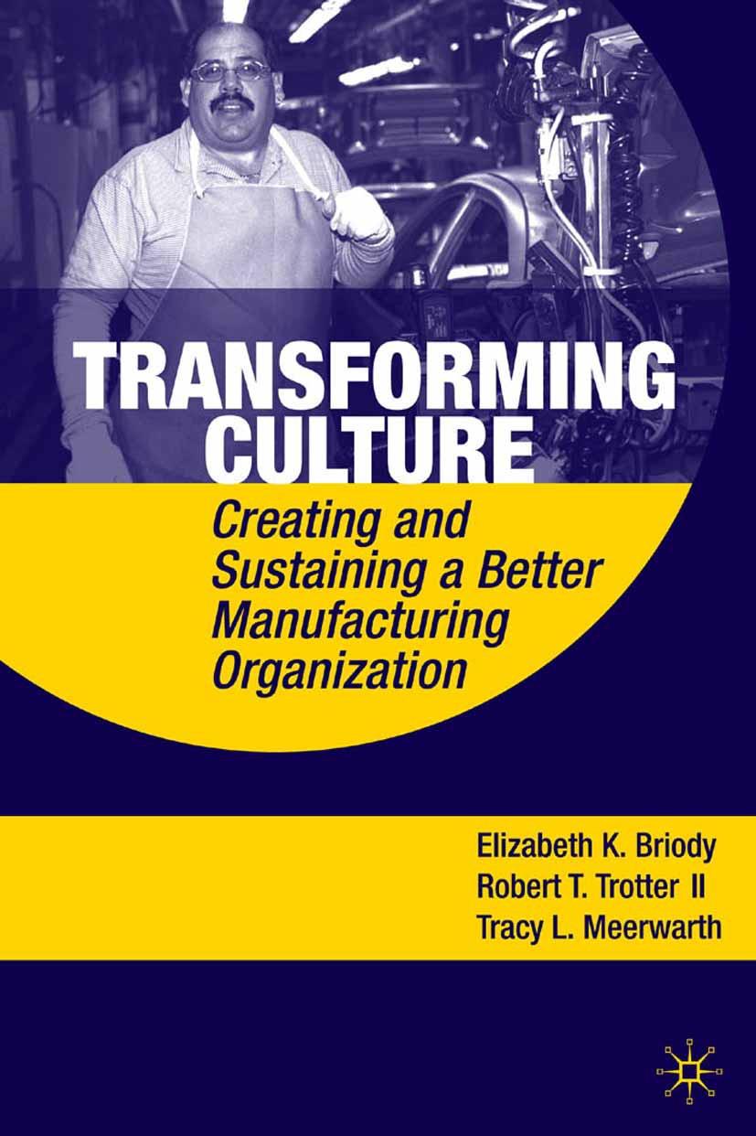Briody, Elizabeth K. - Transforming Culture, ebook