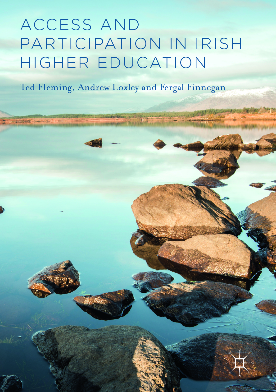 Finnegan, Fergal - Access and Participation in Irish Higher Education, ebook