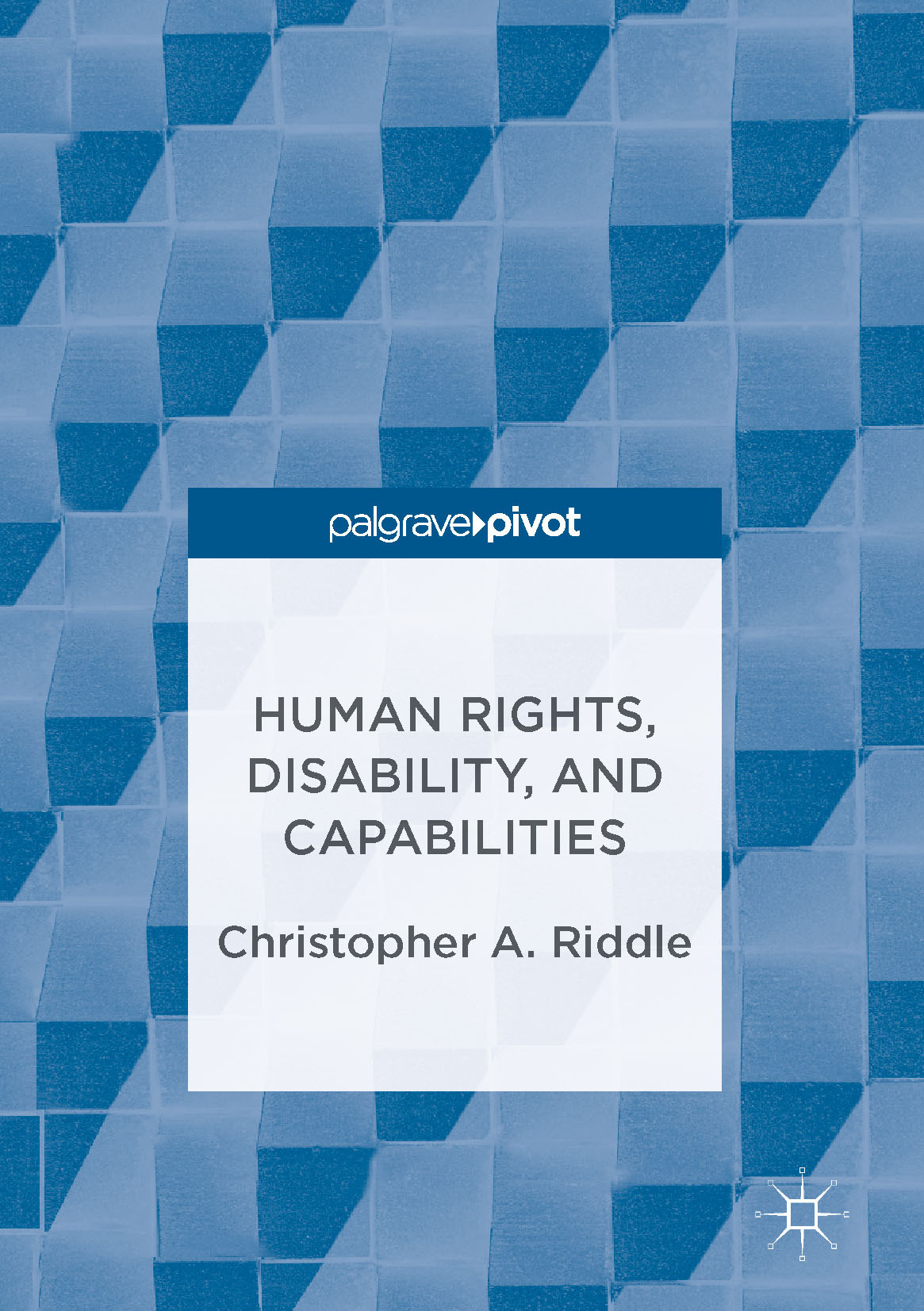 Riddle, Christopher A. - Human Rights, Disability, and Capabilities, ebook