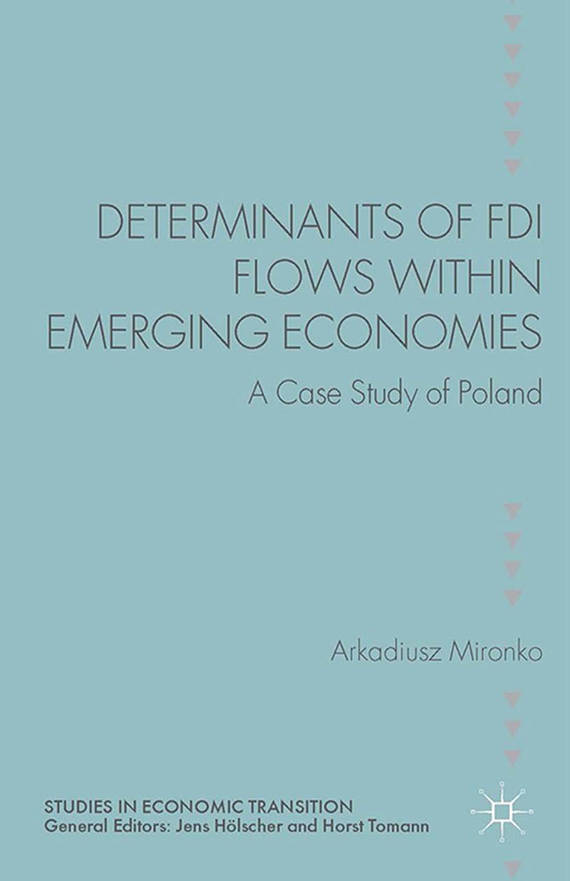Mironko, Arkadiusz - Determinants of FDI Flows within Emerging Economies, ebook