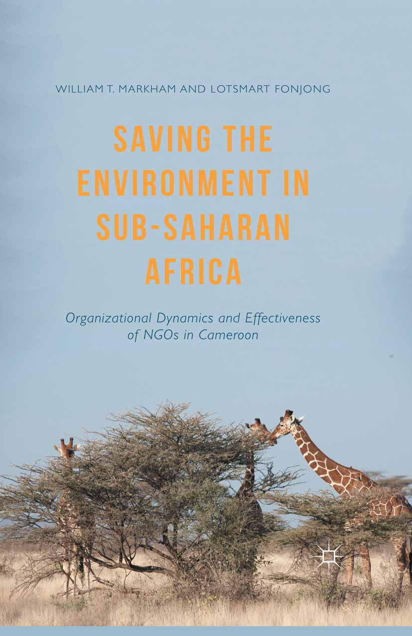 Fonjong, Lotsmart - Saving the Environment in Sub-Saharan Africa, ebook