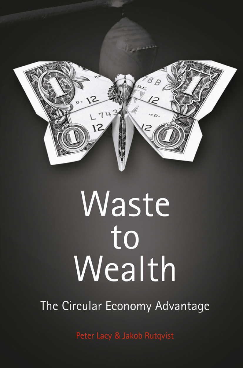 Lacy, Peter - Waste to Wealth, ebook