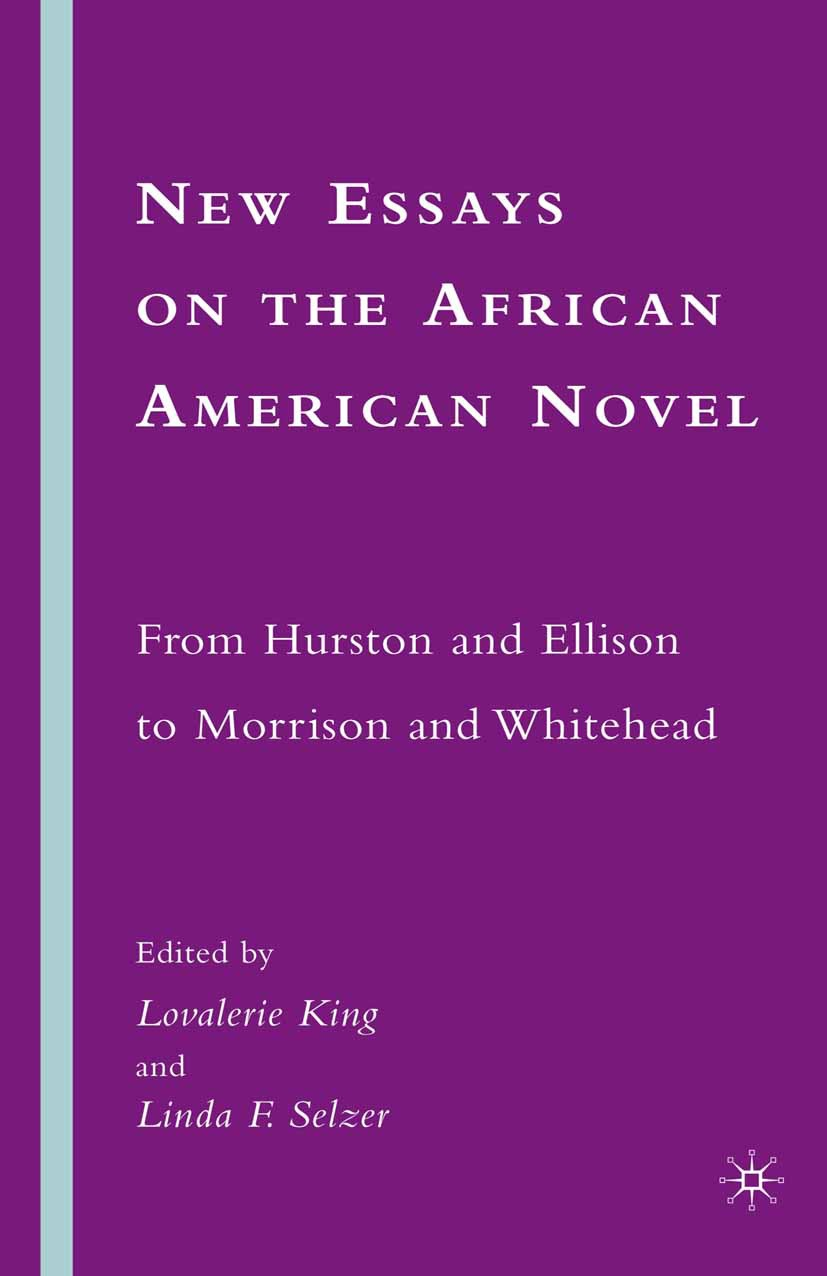 King, Lovalerie - New Essays on the African American Novel, ebook