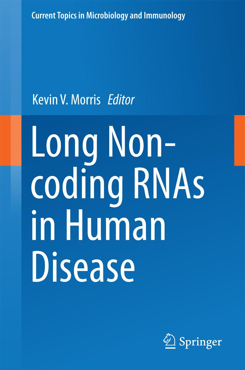 Morris, Kevin V. - Long Non-coding RNAs in Human Disease, ebook