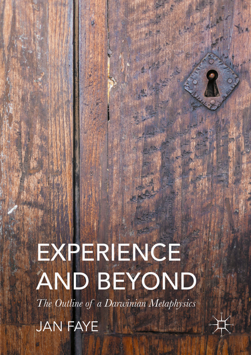 Faye, Jan - Experience and Beyond, ebook