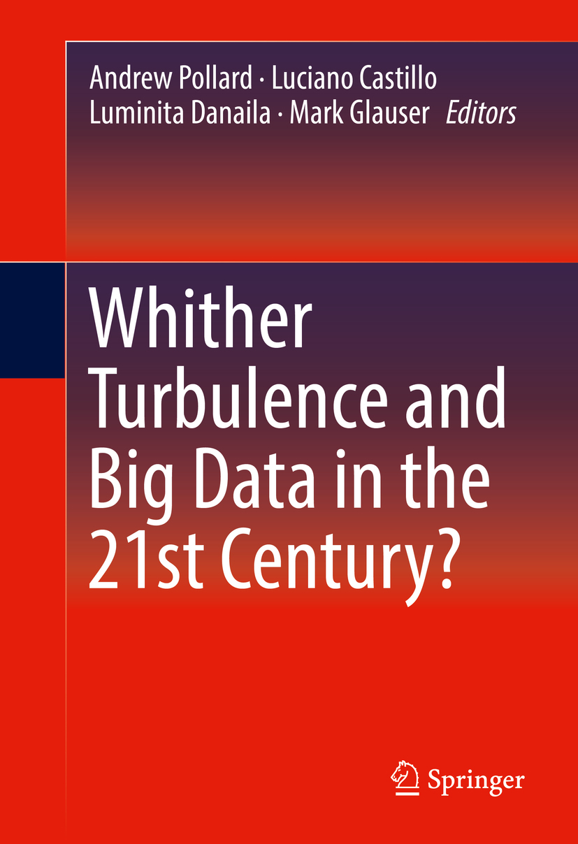 Castillo, Luciano - Whither Turbulence and Big Data in the 21st Century?, ebook