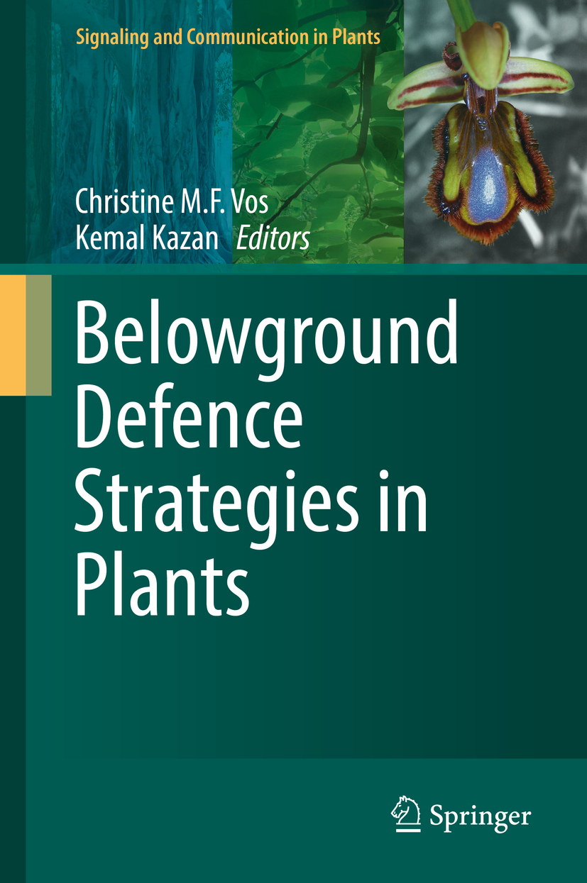 Kazan, Kemal - Belowground Defence Strategies in Plants, ebook
