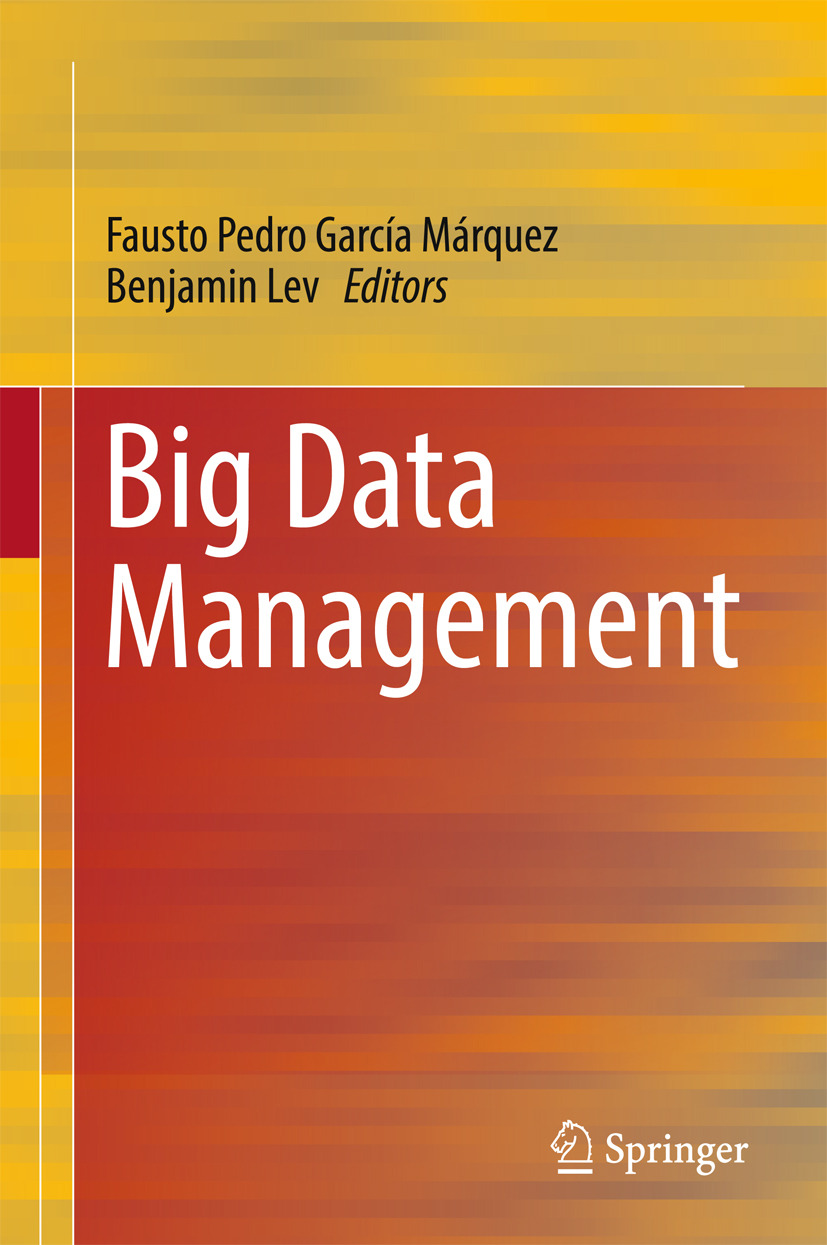 Lev, Benjamin - Big Data Management, ebook