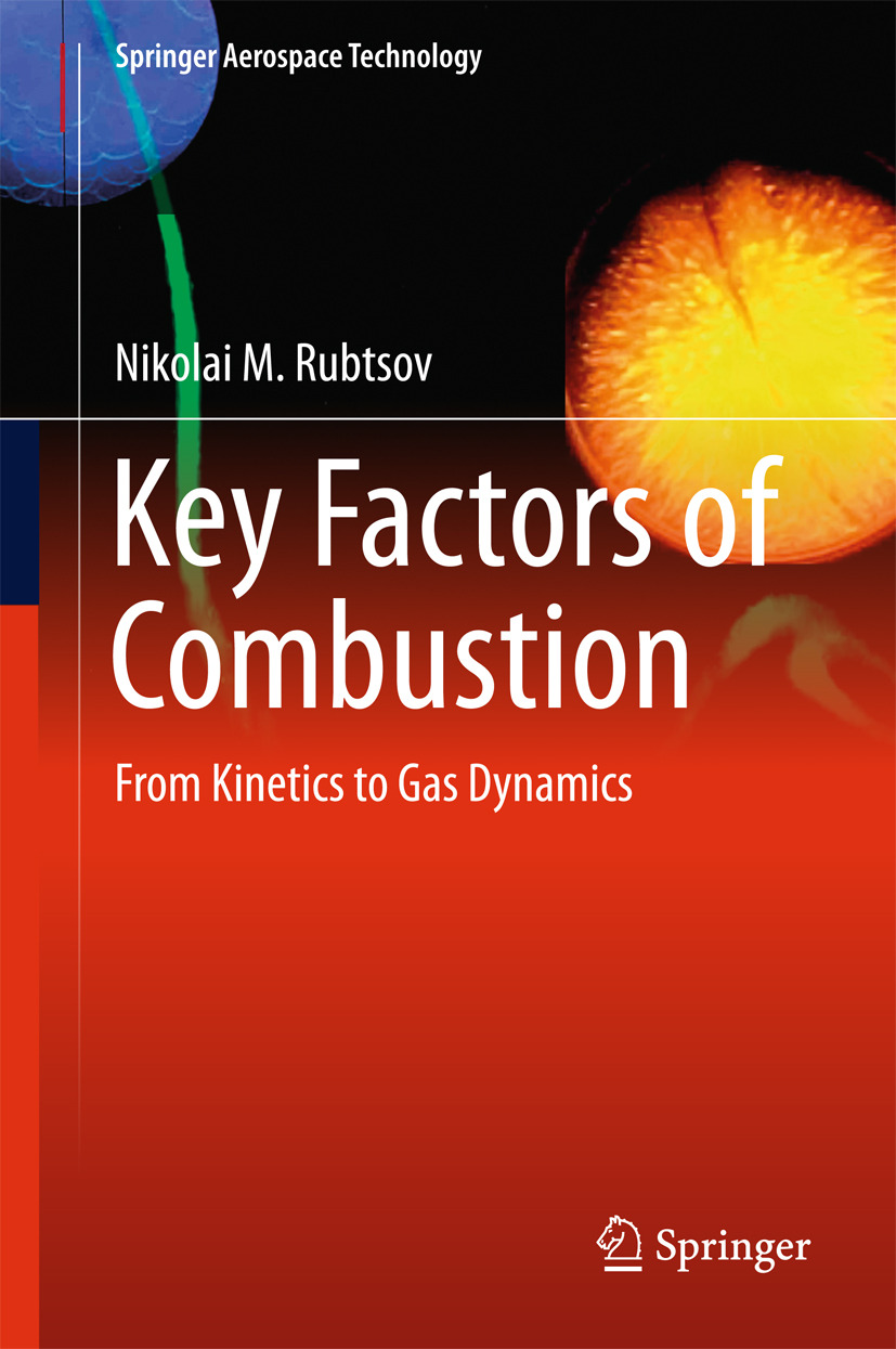 Rubtsov, Nikolai M. - Key Factors of Combustion, e-kirja