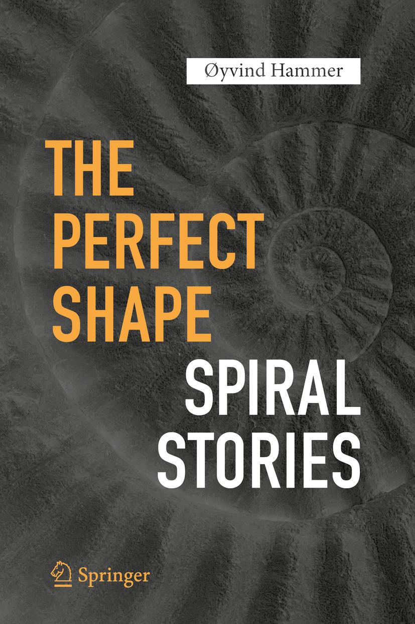 Hammer, Øyvind - The Perfect Shape, ebook