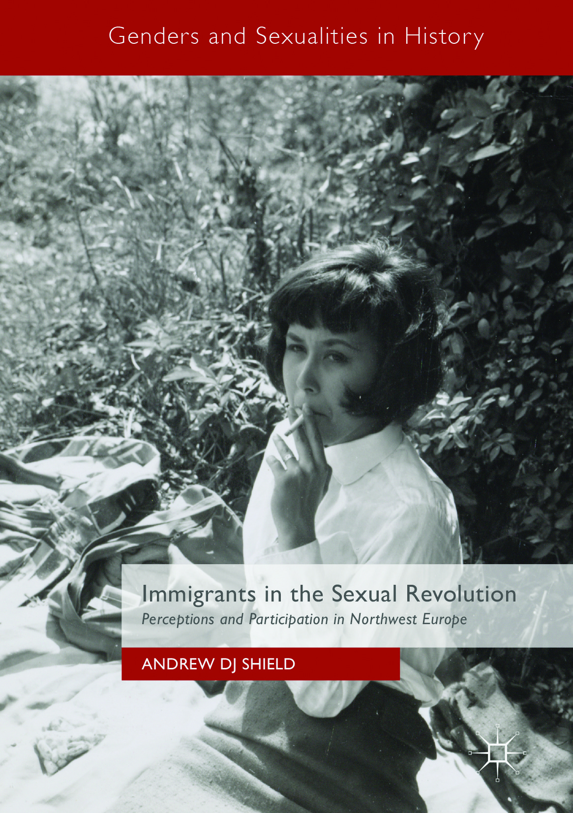 Shield, Andrew DJ - Immigrants in the Sexual Revolution, ebook
