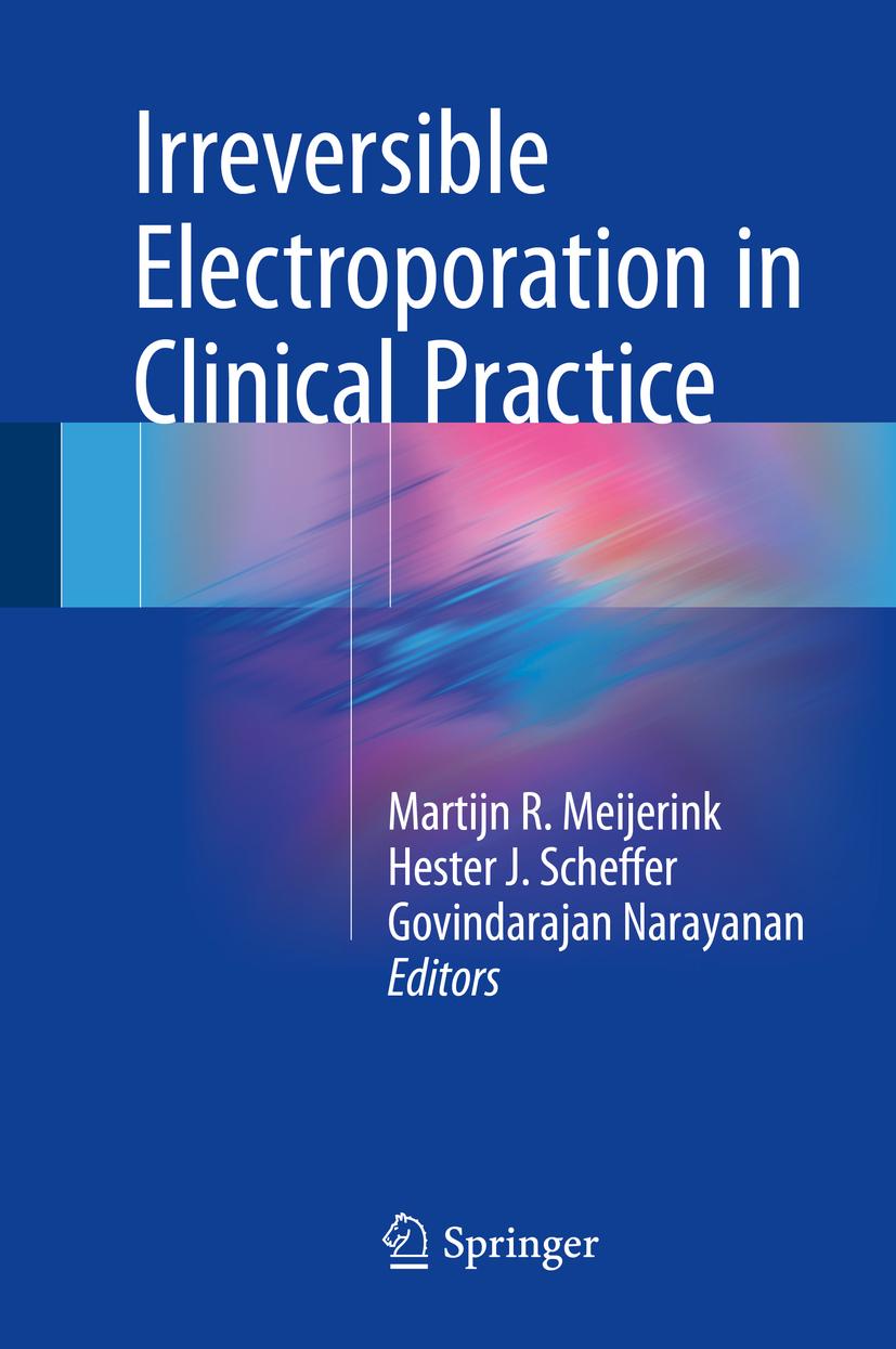 Meijerink, Martijn R. - Irreversible Electroporation in Clinical Practice, ebook