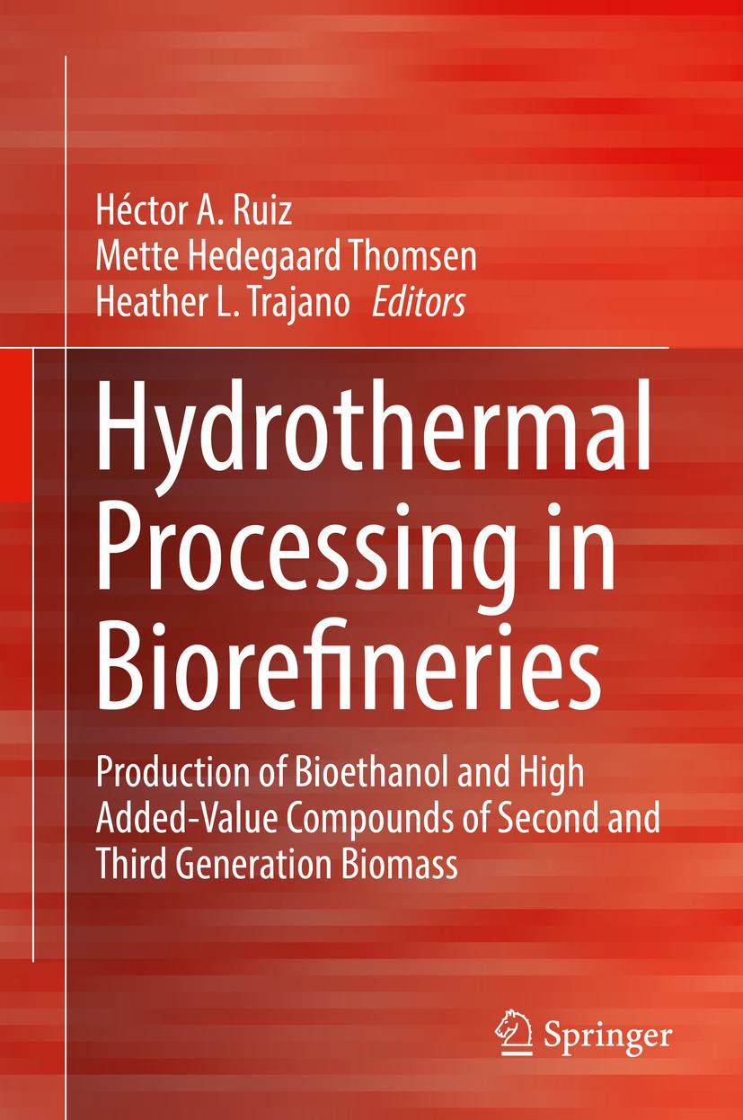 Ruiz, Héctor A. - Hydrothermal Processing in Biorefineries, ebook