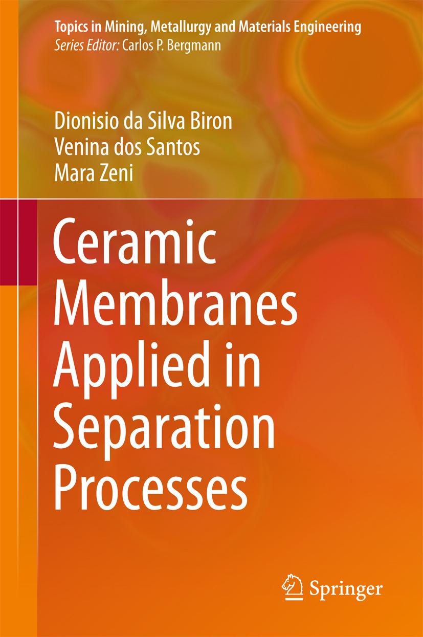 Biron, Dionisio da Silva - Ceramic Membranes Applied in Separation Processes, ebook
