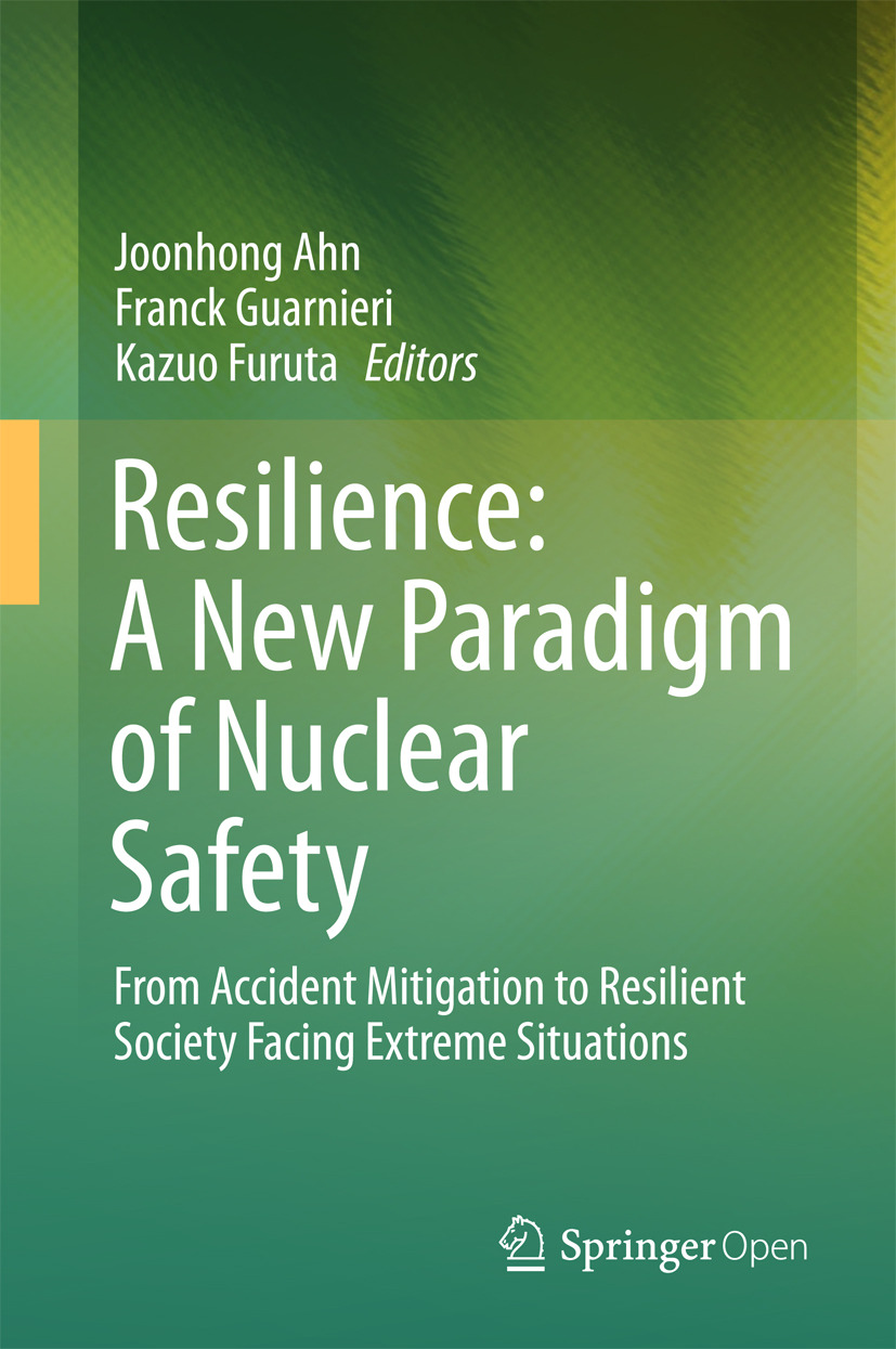 Ahn, Joonhong - Resilience: A New Paradigm of Nuclear Safety, ebook