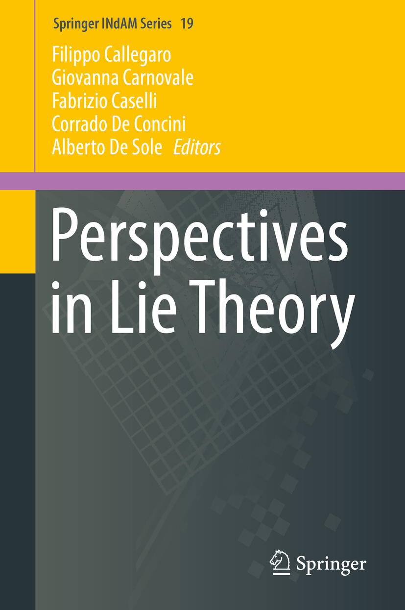 Callegaro, Filippo - Perspectives in Lie Theory, ebook