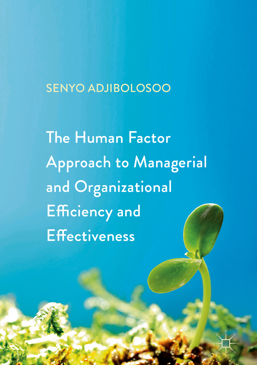 Adjibolosoo, Senyo - The Human Factor Approach to Managerial and Organizational Efficiency and Effectiveness, ebook