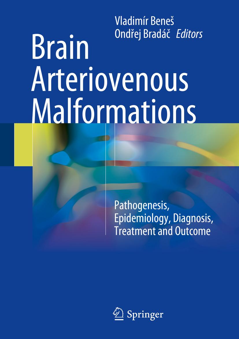 Beneš, Vladimír - Brain Arteriovenous Malformations, ebook