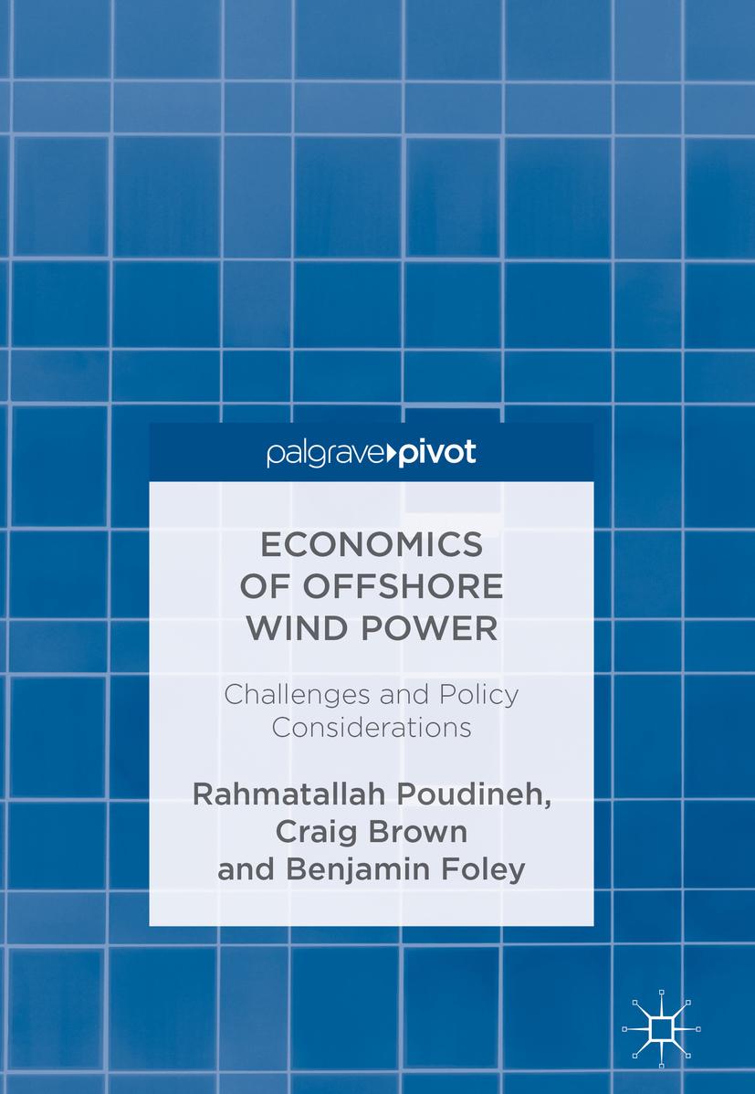Brown, Craig - Economics of Offshore Wind Power, ebook