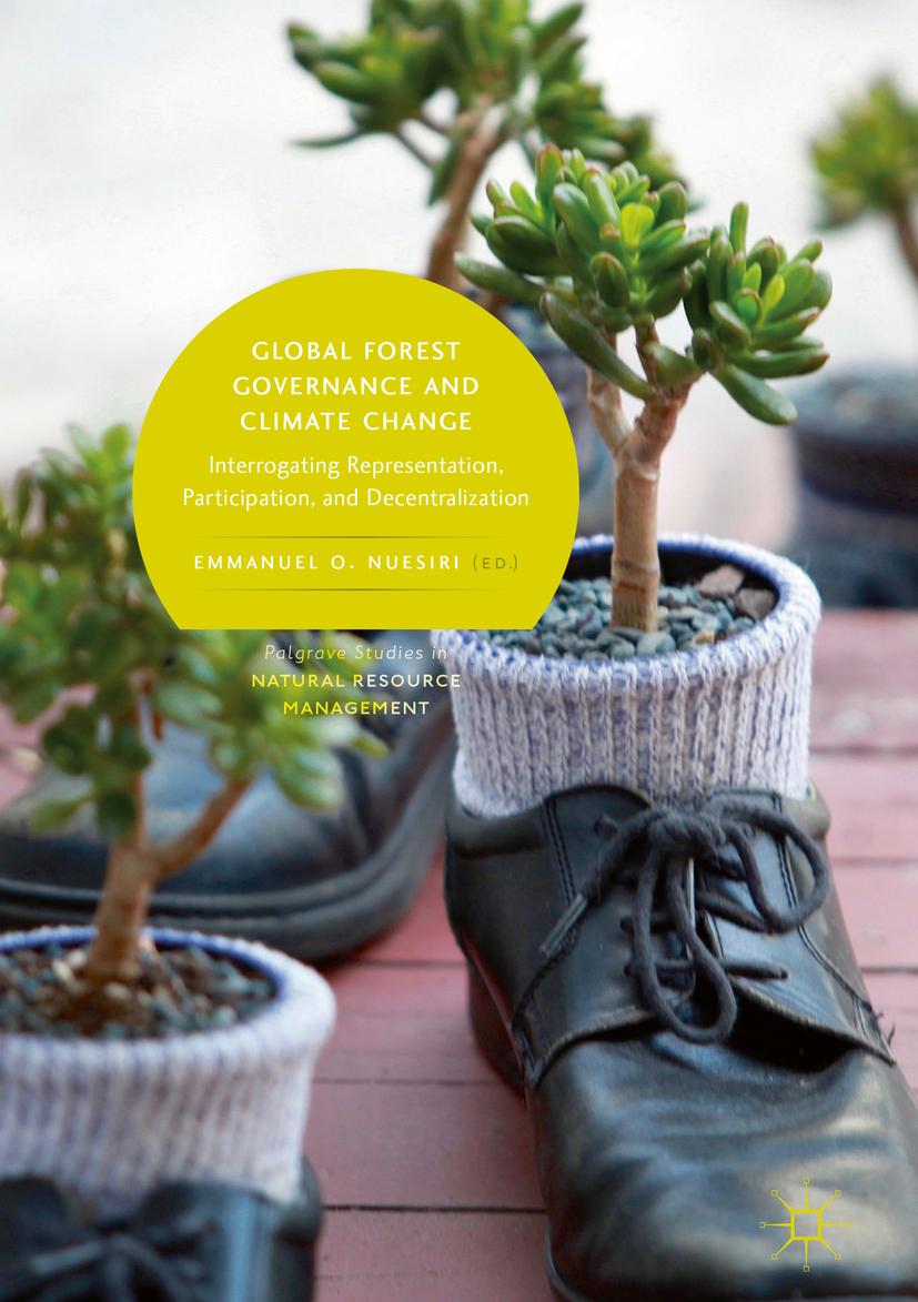 Nuesiri, Emmanuel O. - Global Forest Governance and Climate Change, e-kirja