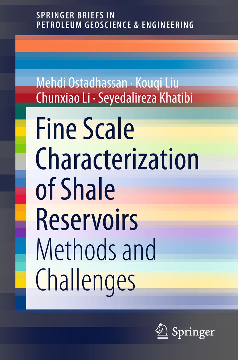 Khatibi, Seyedalireza - Fine Scale Characterization of Shale Reservoirs, ebook