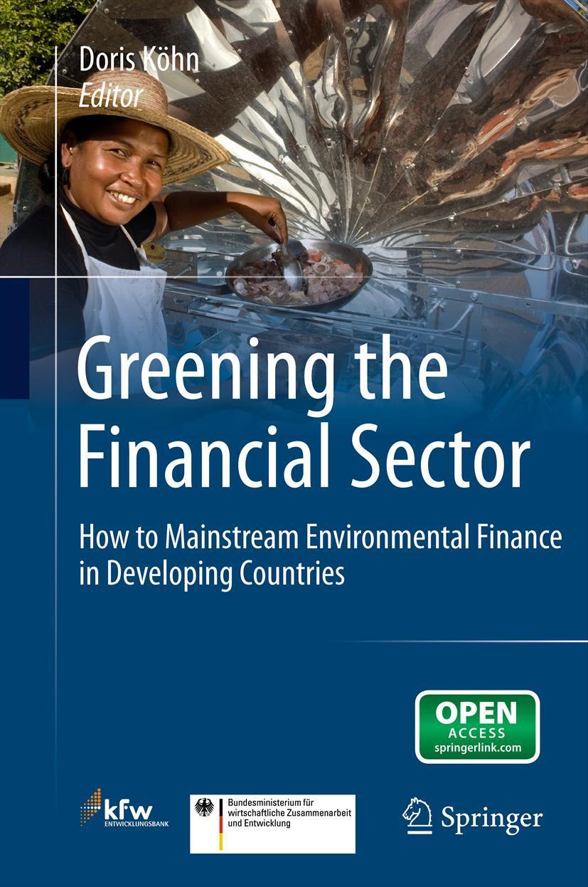 Köhn, Doris - Greening the Financial Sector, ebook