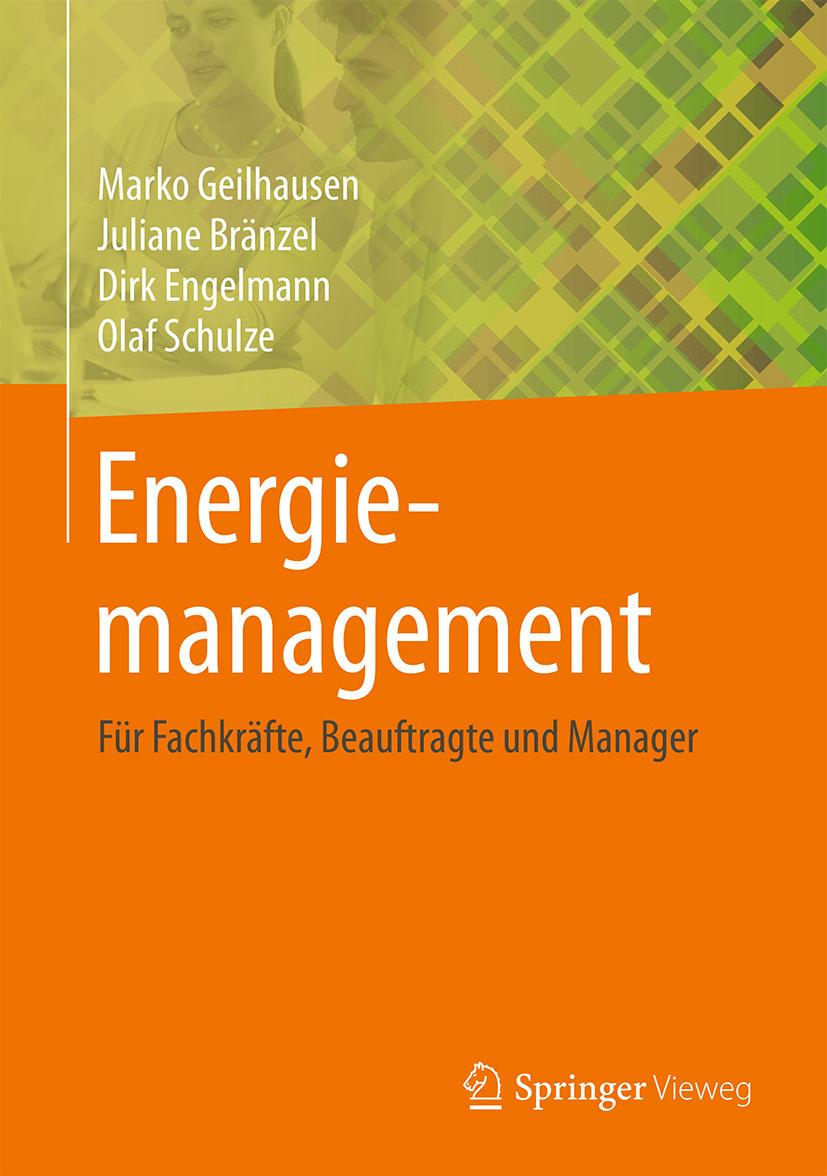 Bränzel, Juliane - Energiemanagement, ebook