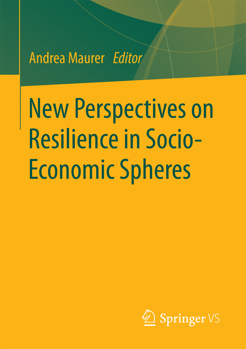 Maurer, Andrea - New Perspectives on Resilience in Socio-Economic Spheres, ebook