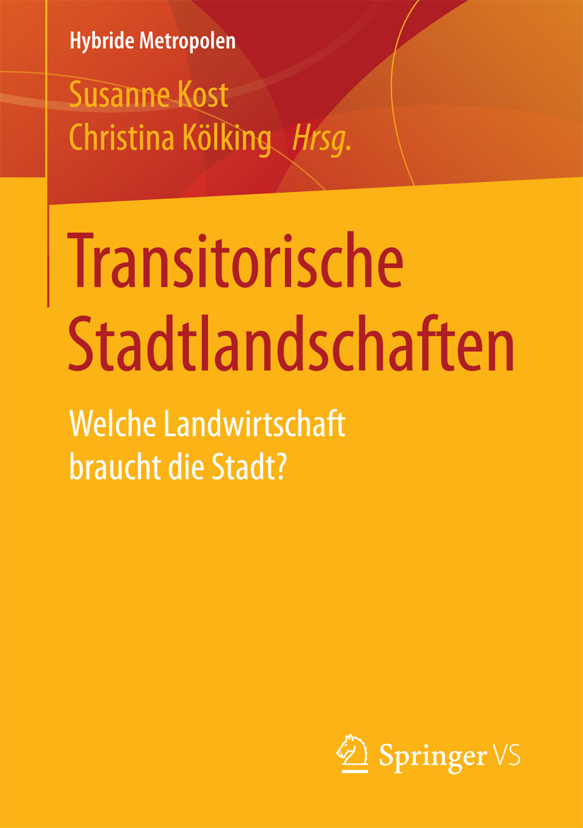 Kost, Susanne - Transitorische Stadtlandschaften, ebook