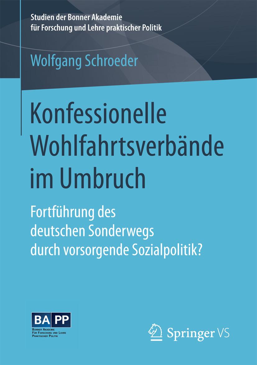 Schroeder, Wolfgang - Konfessionelle Wohlfahrtsverbände im Umbruch, ebook