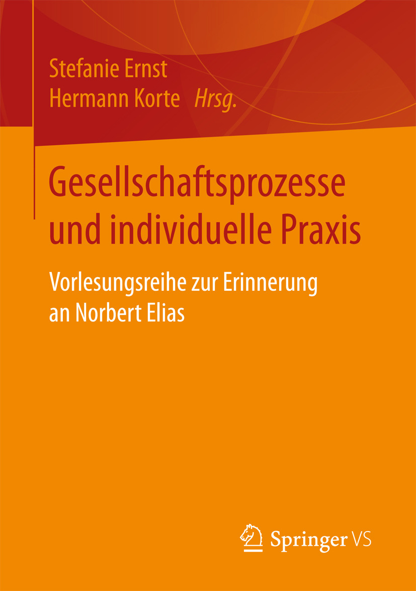 Ernst, Stefanie - Gesellschaftsprozesse und individuelle Praxis, ebook