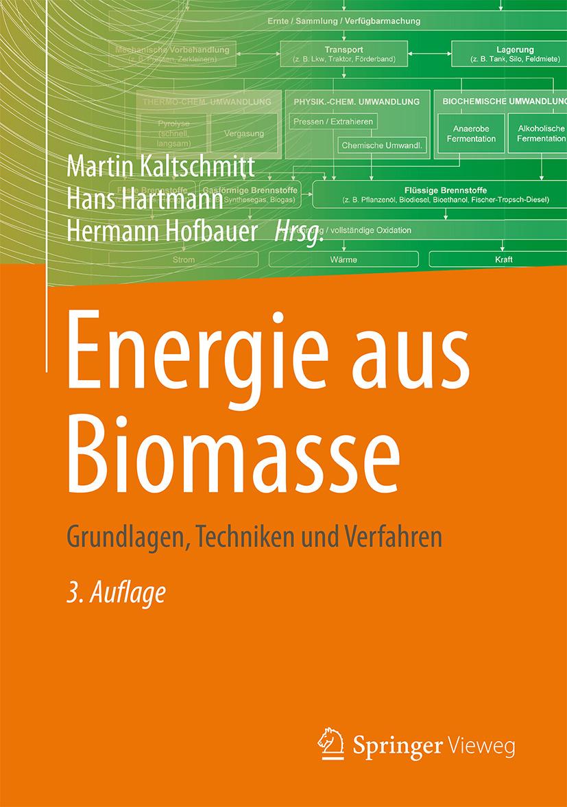Hartmann, Hans - Energie aus Biomasse, ebook