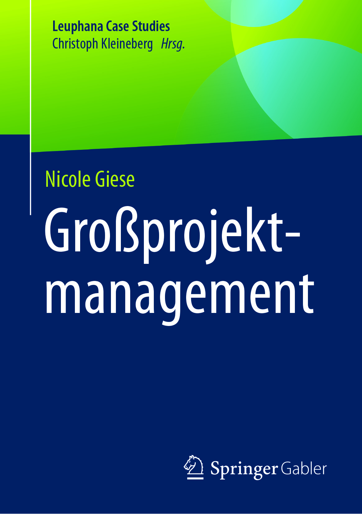 Giese, Nicole - Großprojektmanagement, ebook