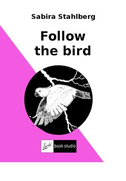 Ståhlberg, Sabira - Follow the bird, ebook