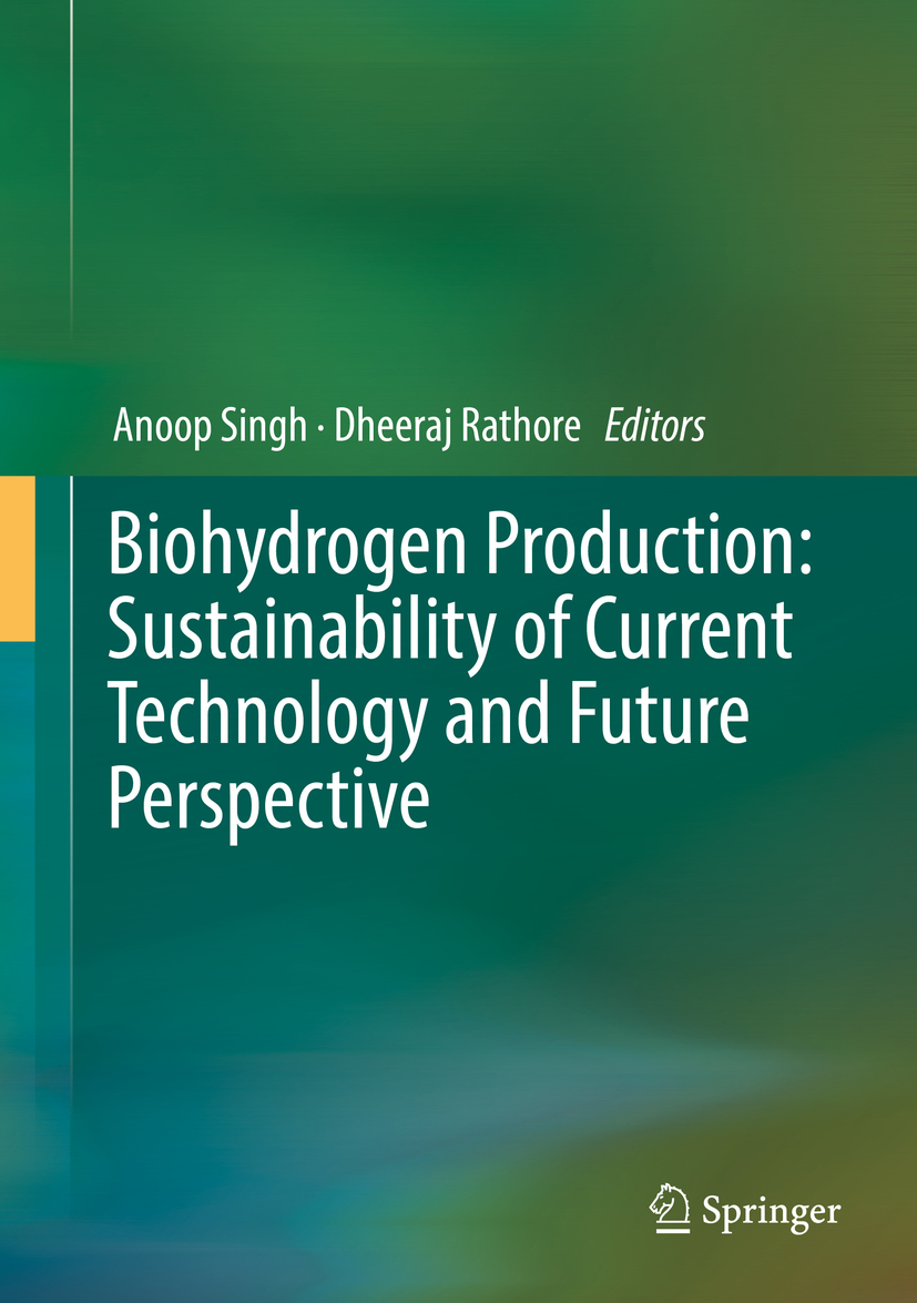 Rathore, Dheeraj - Biohydrogen Production: Sustainability of Current Technology and Future Perspective, ebook