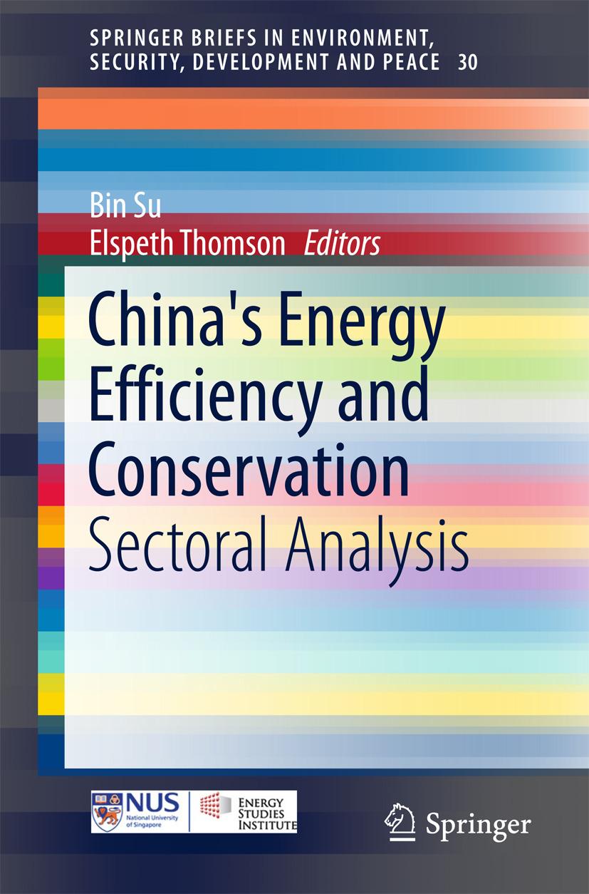 Su, Bin - China's Energy Efficiency and Conservation, e-kirja