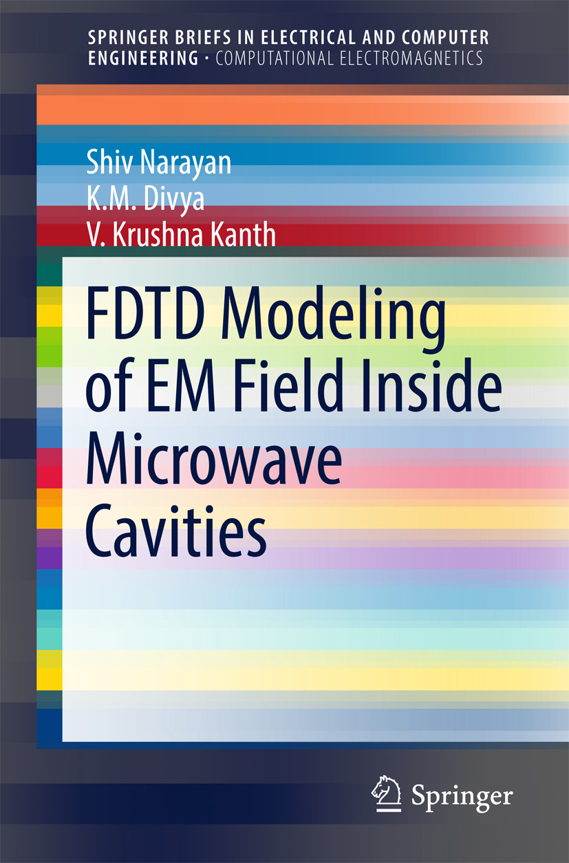 Divya, K. M. - FDTD Modeling of EM Field inside Microwave Cavities, ebook