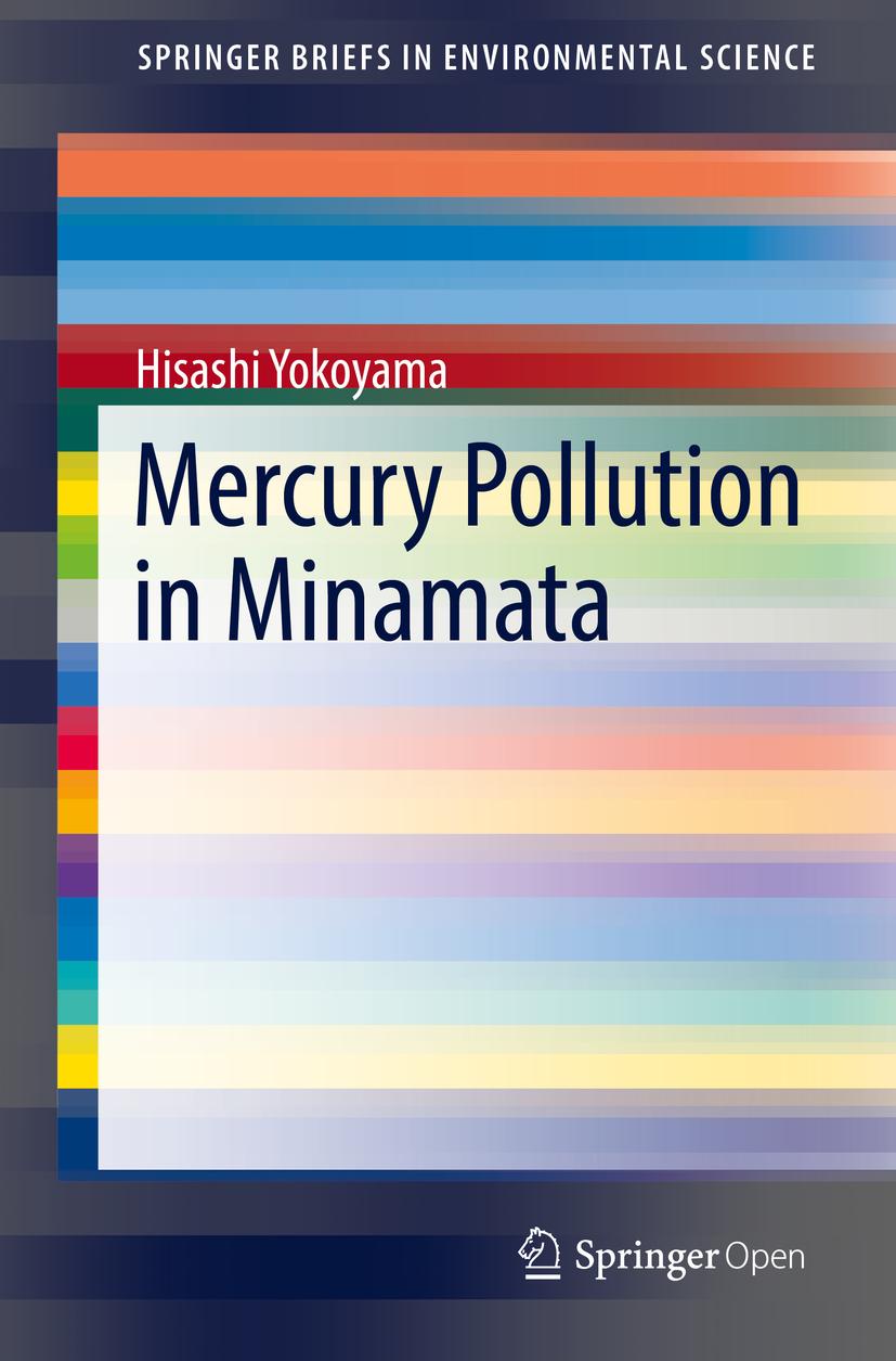 Yokoyama, Hisashi - Mercury Pollution in Minamata, ebook