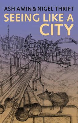 Amin, Ash - Seeing Like a City, e-kirja