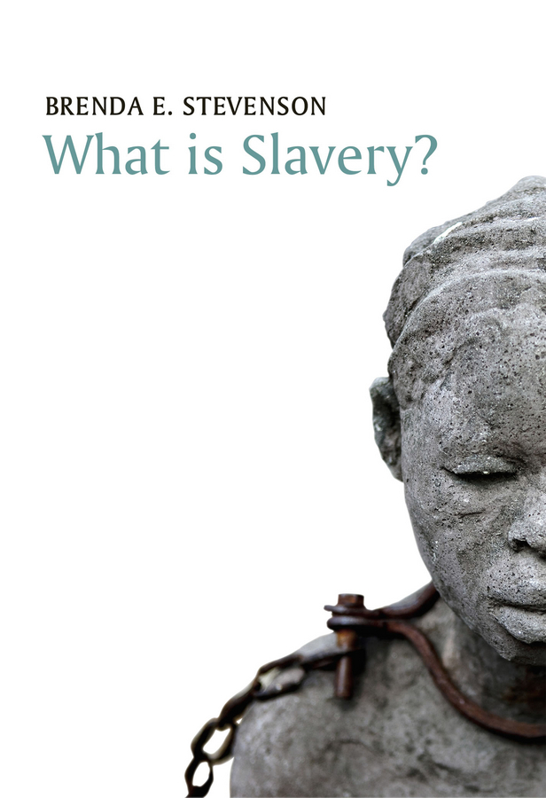 Stevenson, Brenda E. - What is Slavery?, ebook