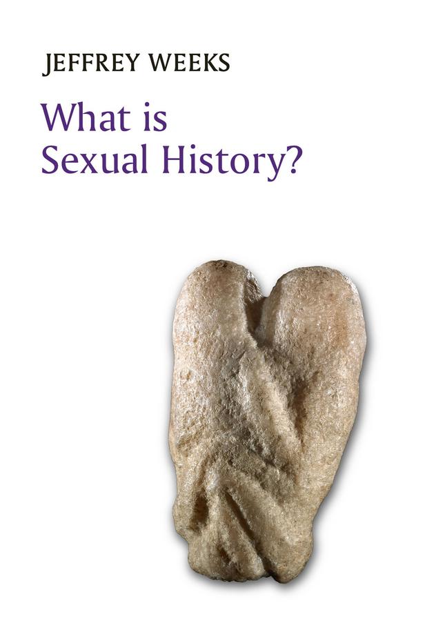 Weeks, Jeffrey - What is Sexual History?, ebook
