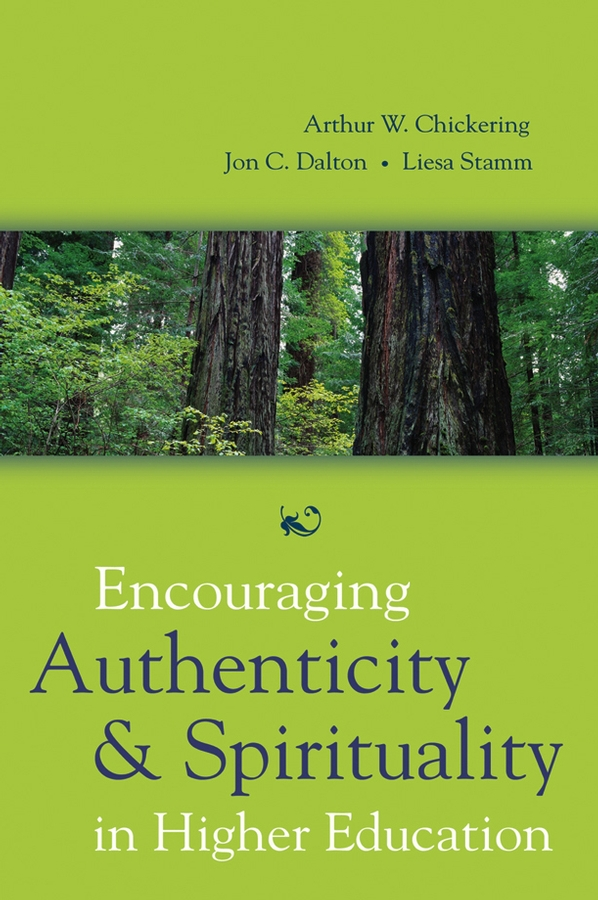 Chickering, Arthur W. - Encouraging Authenticity and Spirituality in Higher Education, ebook