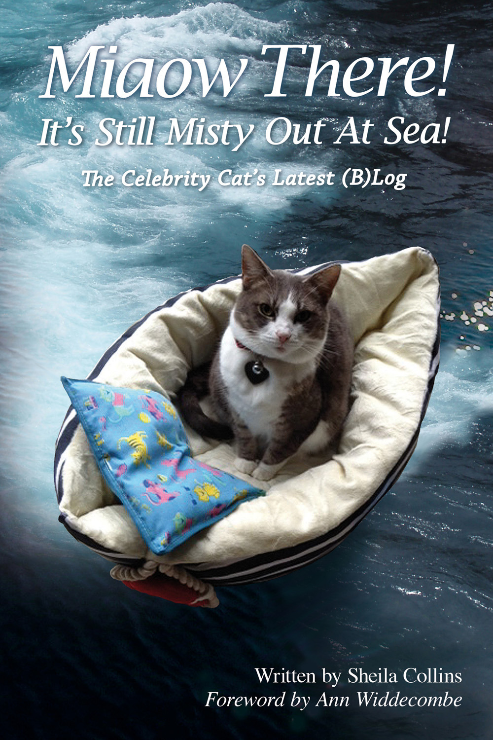 Collins, Sheila - Miaow There! It's Still Misty Out At Sea!, ebook