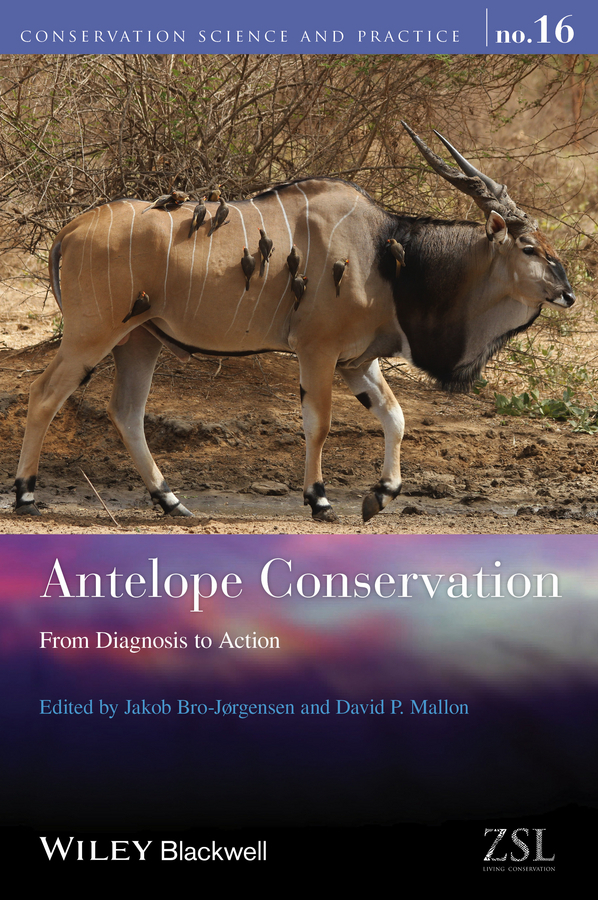 Bro-Jorgensen, Jakob - Antelope Conservation: From Diagnosis to Action, ebook