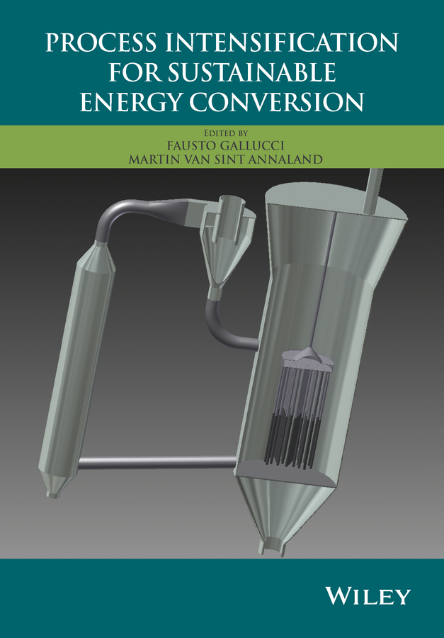 Annaland, Martin van Sint - Process Intensification for Sustainable Energy Conversion, ebook